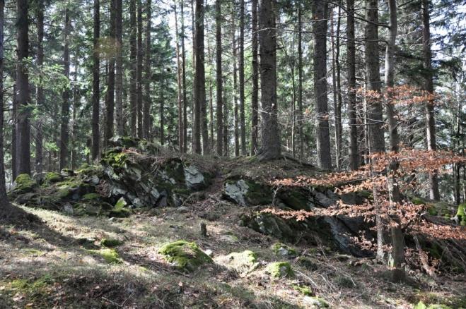 Kóta 1 002 m je jižním vrcholem Velkého Plešného (www.tisicovky.cz). Na vrcholu je malá skalka.