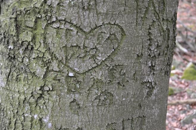 Láska se časem vytratí, ale srdce vyryté před mnoha desetiletími přetrvá věky.