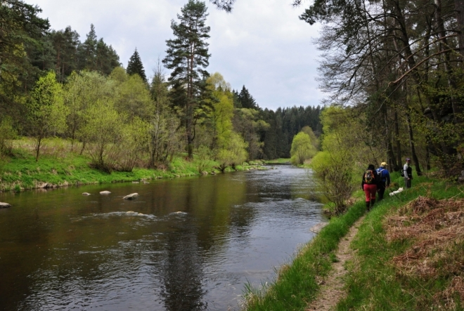 Malebnost řeky skryté v lesích nelze přehlédnout.