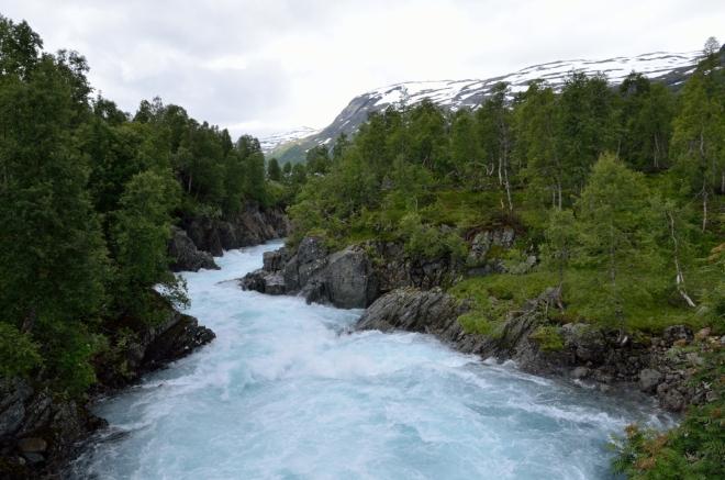 Azurově modrá barva říčky vytváří krásný kontrast s tmavými skalami a zelenými stromy.