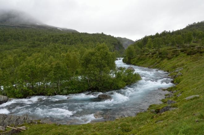 Po levé straně máme říčku Kjøtbekken. I když okolní příroda působí velmi divoce a nespoutaně, k hranici národního parku nám zbývá ještě hodně přes kilometr.