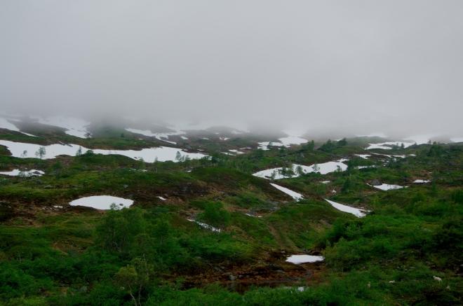 Uchvacuje nás členitost terénu a sytě zelené barvy místní vegetace.