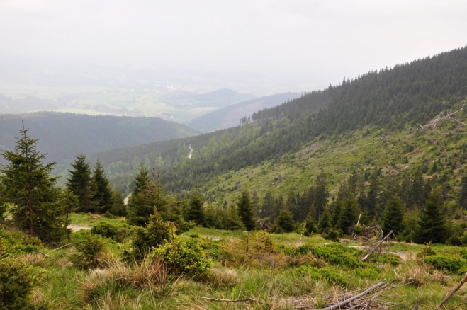 Údolí Stříbrnického potoka.
