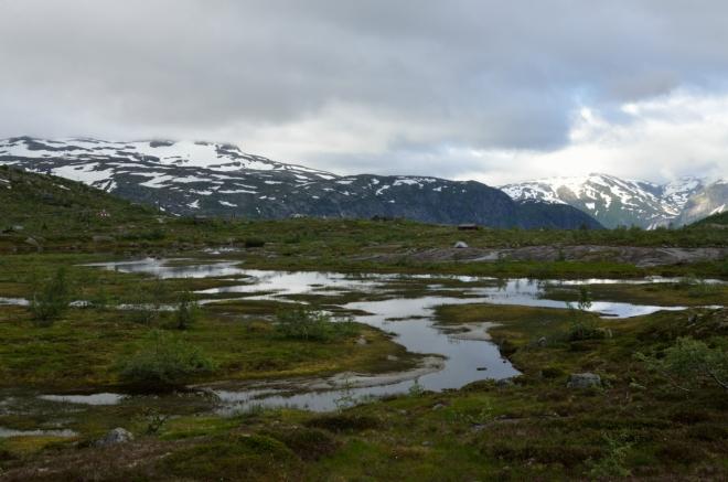 Jeden ukázkový mokřad. Tato Hardangervidda je trochu přívětivější než ta, kterou jsme zažili včera. Na území samotného národního parku se dnes opět nedostaneme, ale krajina je i přesto divoká až dost.