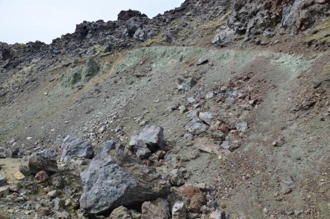 Jedovatě šedo-zelený svah na okraji lávového pole