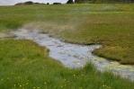 Horký potok