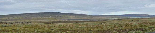Panorama mírně zvlněné krajiny okolo Hrauneyjaru. Zde je ještě poměrně dost zeleně, dokonce z autobusu vidíme i pasoucí se ovce.