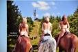 Jistě nejprodávanější pohlednice na horské chatě je tato z Javorového, s mnoha pěknými zadnicemi.