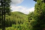 Polomka (984 m n. m.) od Malého Polomu.