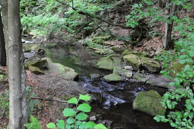 Kotelský potok si razí cestu hlubokým údolím