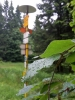 Déšť skrápí listy stromů, zatímco já se před ním skrývám pod stříškou turistického přístřešku.