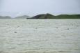 Pohled na Mývatn s ostrůvky tvořené pseudokrátery
