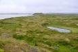 Krajina okolo Mývatnu. Nejedná se o louky, ale spíše o zarostlá lávová pole.