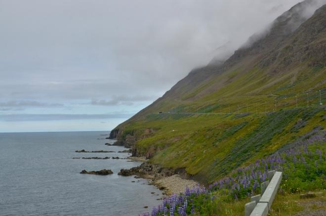 Svahy a útesy poloostrova, které protíná silnice, než se ztratí v tunelu.