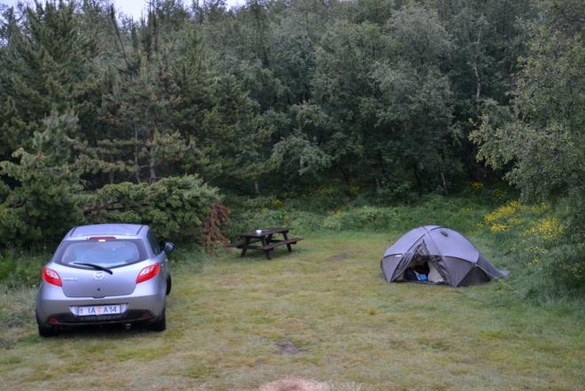 V kempu jsme podle všeho sami, ale jistí si tím nejsme, protože se rozkládá na několika mýtinách v lese (sic!). Skutečně, v chráněném údolí roste převážně jehličnatý les, dokonce se stromy o dost vyššími než člověk. Na Islandu výjimečné.