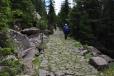 Věřte na staré cesty, byť jsou tvrdé a kamenité...