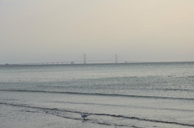 Na jižním obzoru máme jako na dlani první ze soustavy mostů, která spojuje největší dánský ostrov Sjælland s ostrovem Fyn. Tudy bude naše jízda pokračovat.