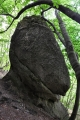 Usměvavá hlava zkamenělého plesiosaura je jedním z mnoha podivuhodných skulptur.