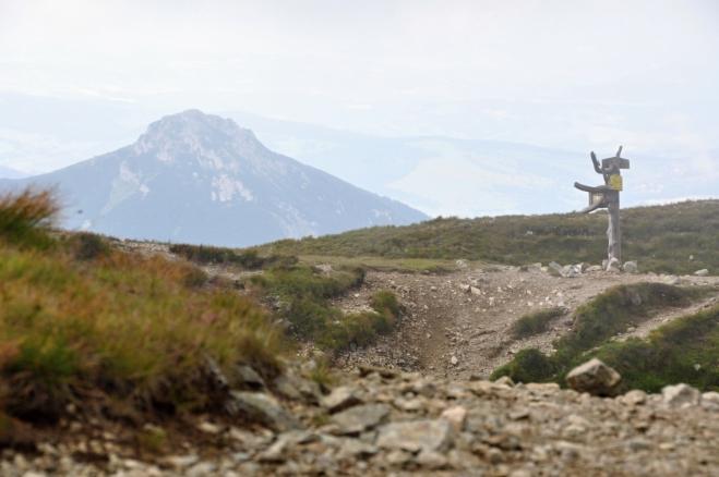 Sivý vrch. Velmi krásný a často opomíjený vrchol se travnatým hřebenům Roháčů příliš nepodobá. Bližším je mu nedaleký vápencový Velký Choč.
