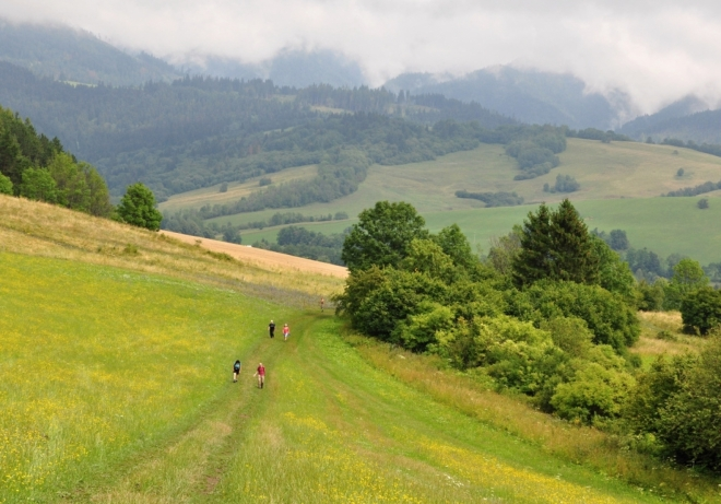 Loukou pokračujeme do ústí Prosiecké doliny. Moje rychlé tempo nesdílí nikdo.