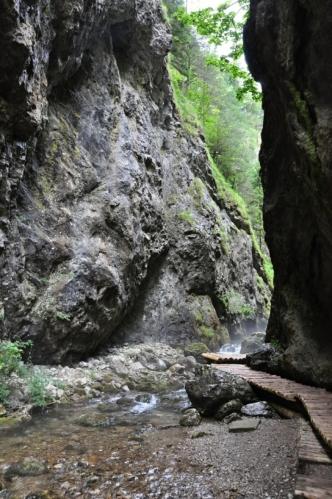 3 km dlouhou Prosiecká dolinu vyhloubil potok Prosečianka ve východní části pohoří Chočské vrchy mezi masívy Lomno (1278 m) a Prosečné (1372 m).