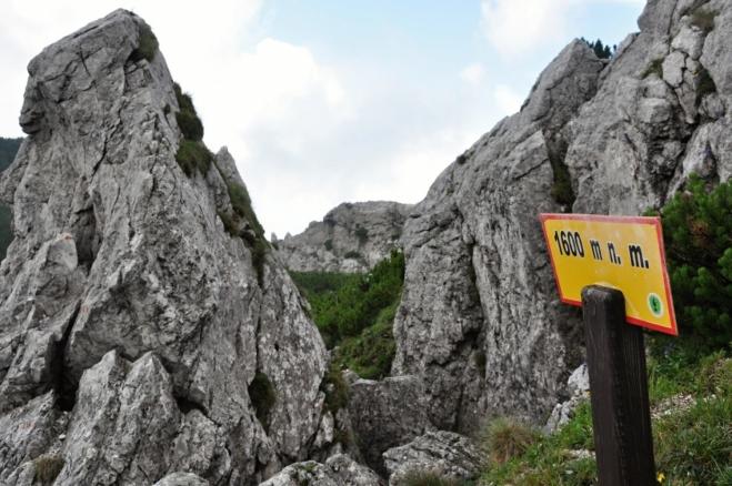 Posledních 200 m budeme stoupat ve skalách.