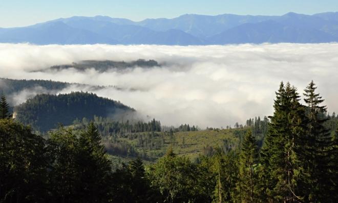 V létě jsou takto husté mlhy výjimkou.