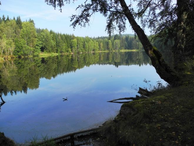 Dolní Hraniční rybník je soukromý. Cedule zakazující téměř vše, to sdělují jasně.