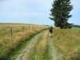 Putujeme mezi pastvinami nedaleko Staré Knížecí Hutě.