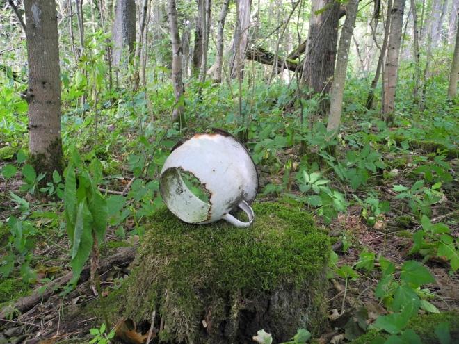 Vše zarůstá vegetací. Žije vůbec ještě ten, kdo naposledy sedl na tento děravý nočník?