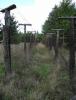Železná opona u vrcholu Havrana. Možná jde o rekonstrukci jednoho z mnoha prototypů plotu, ten co známe však měl čtyřmetrovou proluku, aby v rozorávané a kypřené půdě zůstaly otisky stop a jeho šířku nešlo přeskočit.