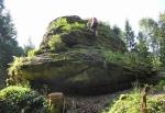Zde kdysi stál hrad Šelmberk, také Starý zámek. Na 769 metrů vysokém kopci pozůstatky hradu, založeného kolem roku 1300 v obtížně prostupných lesích, který již v polovině 14. století zanikl, zřejmě vypálením. Stával na výrazné skalce chráněné dodnes patrným příkopem a valem. Do pásu opevnění byly začleněny i další skalky v okolí a druhý příkop na západní straně. Řada prvků opevnění byla dřevěná, takže zmizela beze stop. Na severní straně je vyrovnaný prostor zbavený kamení - jakési předhradí. Zachovaly se zbytky zdí.