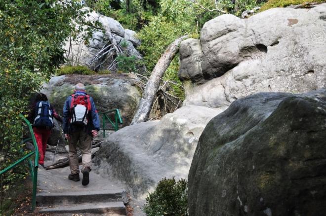 Hejšovina má dva vrcholy, z nichž ten východní je nejvyšším vrcholem Stolových hor (919 m n. m.). Úchvatným skalním městem vede naučná stezka. Projdete se bludištěm mezi skalními věžičkami, i po skalních plošinách s vyhlídkami do dalekého okolí.