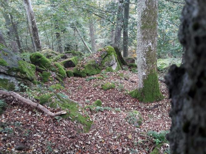 Sestup z Černého lesa.