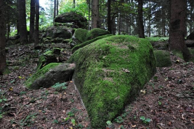 Uhlíkovsky kopec - Skalky...