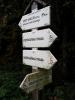 Když jsem koukal na www.mapy.cz, nevěděl jsem, co znamená růžové značení. A hle, ony jsou to stezky pro vozíčkáře. Nedaleká lázeňská Třeboň v tom má jistě prsty.