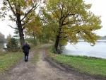 Hodně cest zde vede mezi mnoha rybníky, které tvoří dohromady obrovskou vodní plochu. Kdyby jich nebylo, zřejmě by šlo o největší rybník u nás.