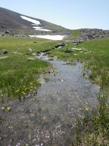 Sněhová pole jsou asi hlavním důvodem, proč je ve vrcholové části Gegham stále ještě dostatek vody. Vypravit se sem o pár týdnů později, možná bychom už mimo jezera o vodu nezavadili.