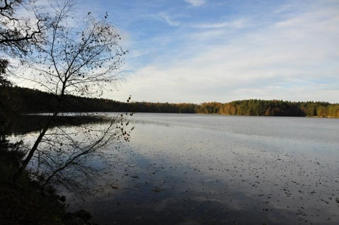 Blanský rybník.