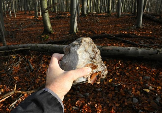 I křemen je v malém množství v podloží Kameníku zastoupený.