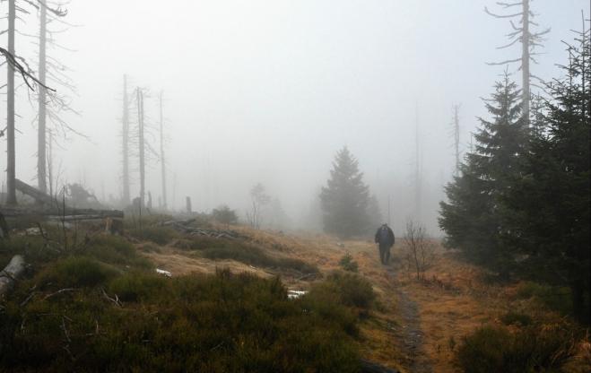 K vrcholu Jezerní hory nás vede pěšina.