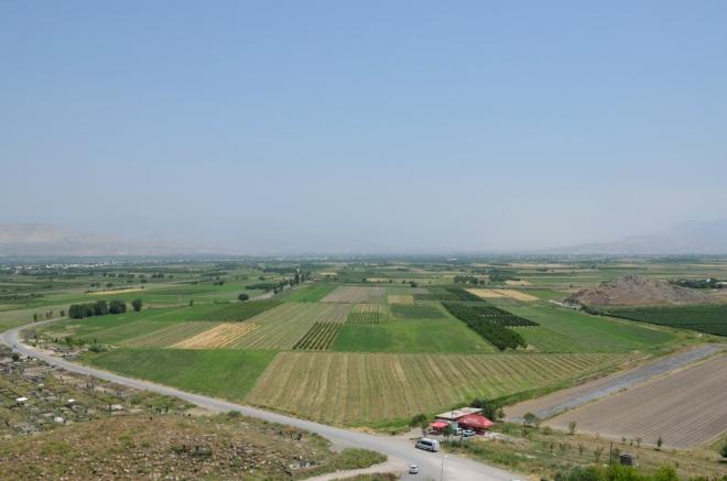 Úrodná Araratská rovina je hojně zemědělsky využívána. Namátkou si odtud vybavuji vinnou révu a olivovníky.