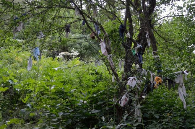 Hlavní atrakcí na této stezce bohužel není vodopád, ale strom ověšený kapesníky, jakých najdete po celé Arménii zřejmě stovky. Jde o velmi starou tradici, zavěšený kapesník má dané osobě zaručit splnění přání.