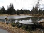 Zlatěšovický rybník...