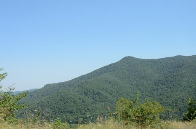 Následujících asi patnáct kilometrů nás silnice vede přímo po hranici, v nadmořských výškách okolo 1500 metrů. Hodně času trávíme v hustých lesích, kde jsem bohužel vůbec nefotil.