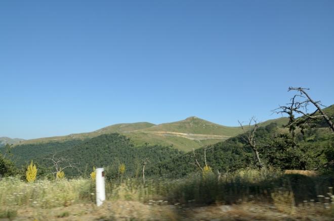 Ani z těchto lesů jsem toho moc nenafotil. Ještě před chvílí byly všechny kopce zcela porostlé.