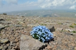 Výhled ze západního vrcholu Aragatsu (cca 4000 m), Arménie