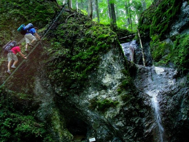 Tahle místa jsou zde spíš výjimkou a určitě jsou ve Slovenském ráji atraktivnější doliny s množstvím žebříků a stupů (Suchá Belá, Piecky, Kláštorská roklina, Sokolí, s několika za sebou jdoucími kolmými žebříčky atd.).