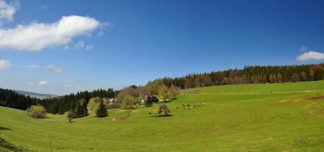 Pastviny u Dolejší Svinné...