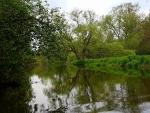 Nežárka je hezkou řekou. Má v sobě kou Lužnice a kousek Nové řeky.